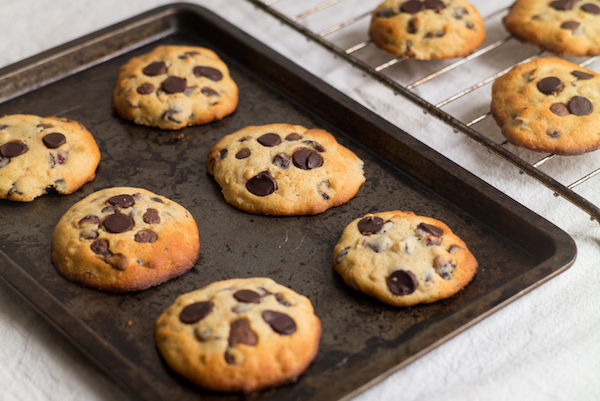 Honey chocolate chip cookies with cranberries make the ultimate holiday cookie
